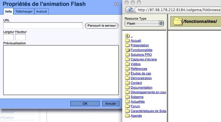 Intégration de fichier Flash