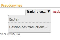 Traduire sur un site Solgema