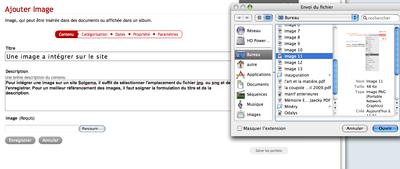 Copie d'écran de l'importation d'une image sur un site Solgema